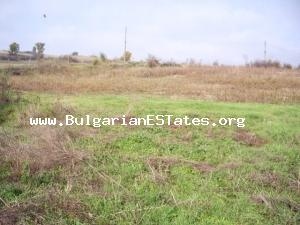 Land for sale in a great price located at the village of Elena – chance for investment.